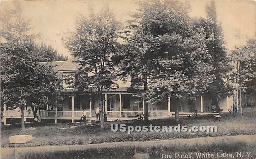 The Pines - White Lake, New York NY Postcard