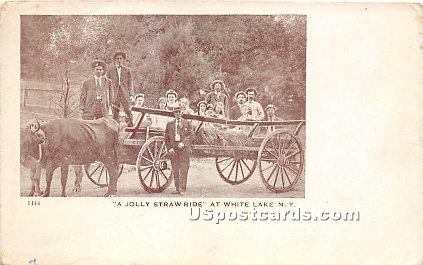 A Jolly Straw Ride - White Lake, New York NY Postcard