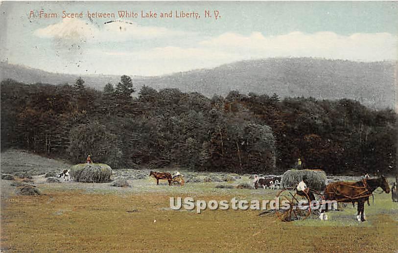 A Farm Scene between White Lake & Liberty - New York NY Postcard