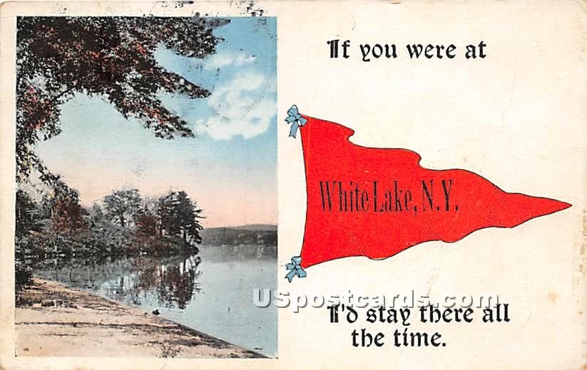 If you were at White Lake I'd Stay there all the time - New York NY Postcard