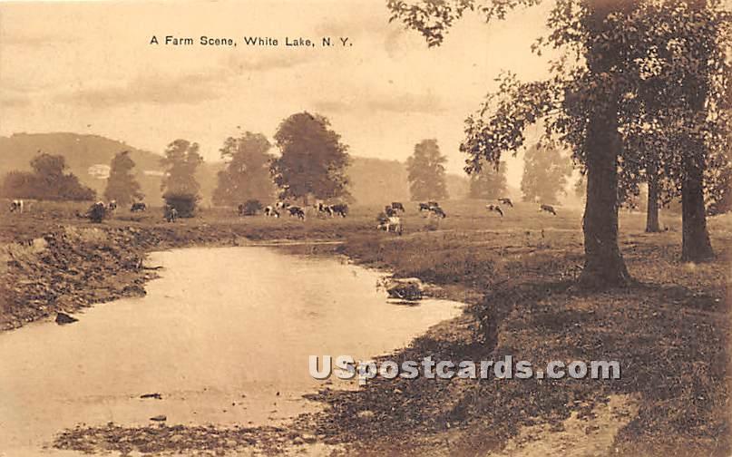 A Farm Scene - White Lake, New York NY Postcard