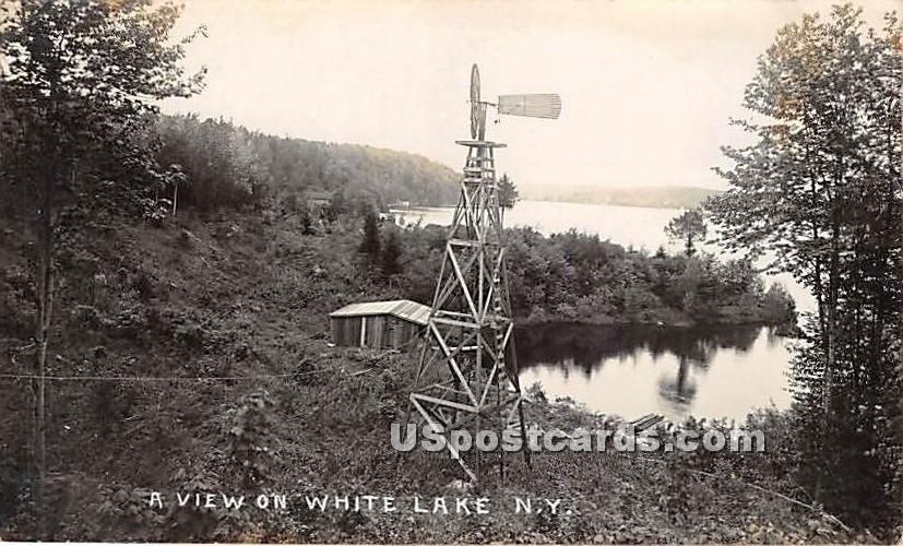 A View on White Lake - New York NY Postcard