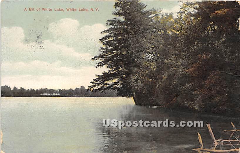 A Bit of White Lake - New York NY Postcard
