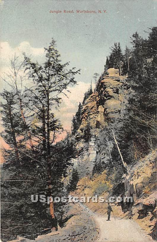 Jungle Road - Wurtsboro, New York NY Postcard