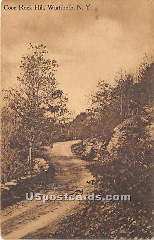 Coon Rock Hill - Wurtsboro, New York NY Postcard