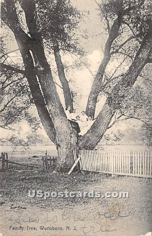 Family Tree - Wurtsboro, New York NY Postcard