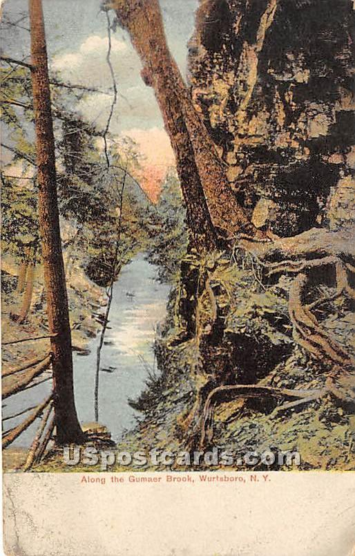 Along the Gumaer Brook - Wurtsboro, New York NY Postcard
