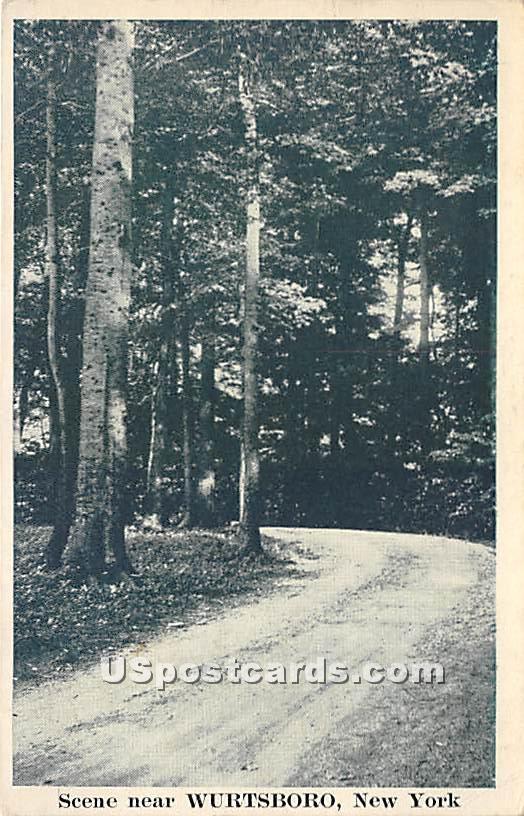 Dirt Road - Wurtsboro, New York NY Postcard