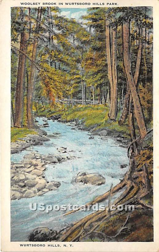 Woolsey Brook - Wurtsboro, New York NY Postcard