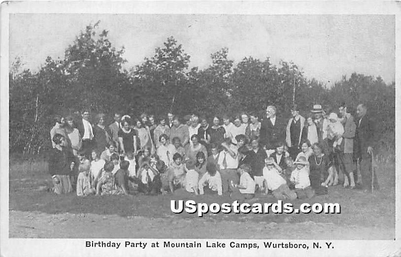 Birthday Party at Mountain Lake Camps - Wurtsboro, New York NY Postcard