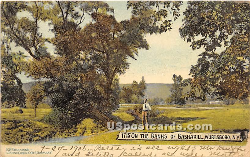 On the Banks of Bashakill - Wurtsboro, New York NY Postcard