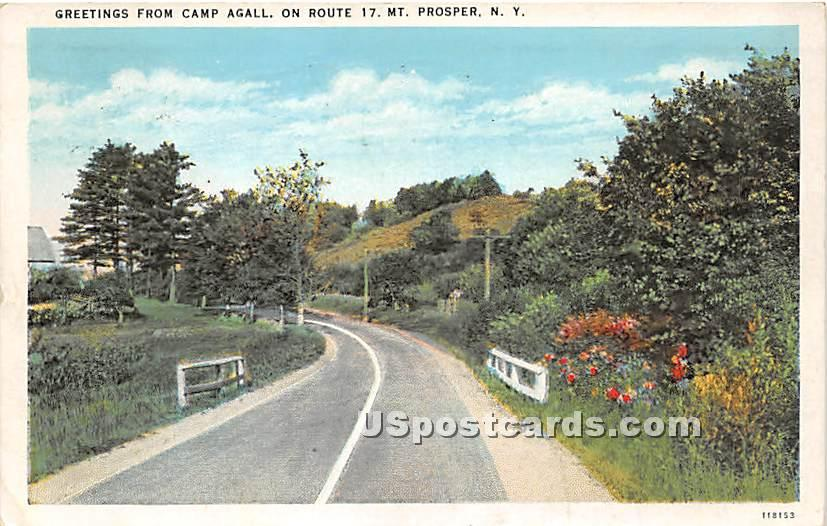 Greetings from Camp Agall - Wurtsboro, New York NY Postcard