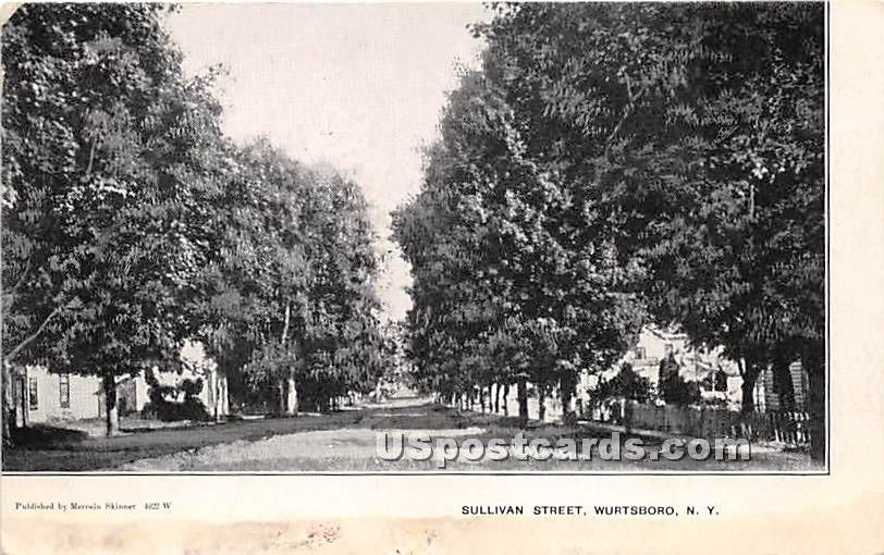 Sullivan Street - Wurtsboro, New York NY Postcard