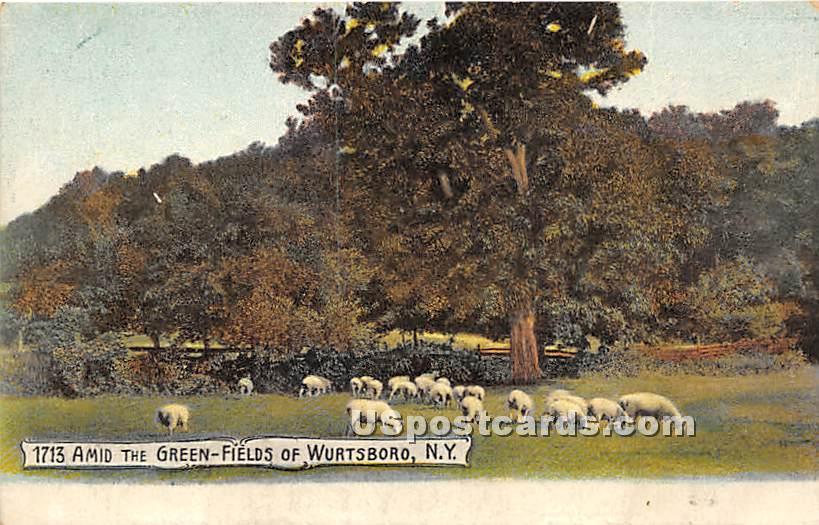 1713 Amid the Green Fields - Wurtsboro, New York NY Postcard