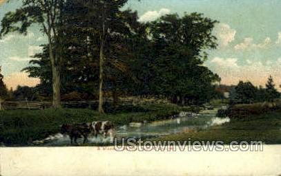 Meadow Stream - Watertown, New York NY Postcard