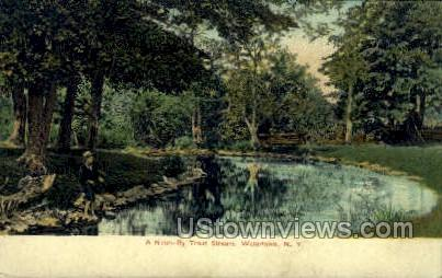 Trout Stream - Watertown, New York NY Postcard