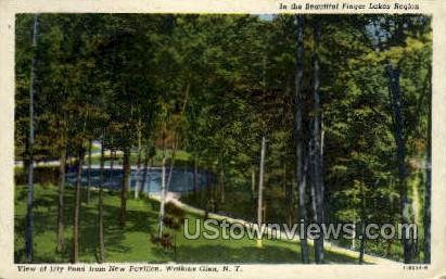 Finger Lakes Region - Watkins Glen, New York NY Postcard
