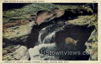 Mide Point Bridge, Deer - Watkins Glen, New York NY Postcard