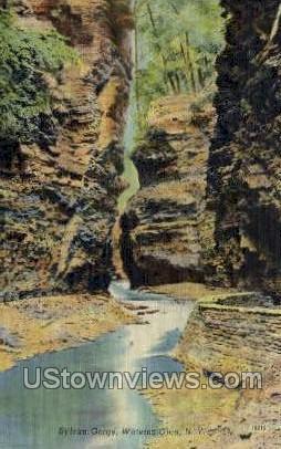 Sylvan Gorge - Watkins Glen, New York NY Postcard