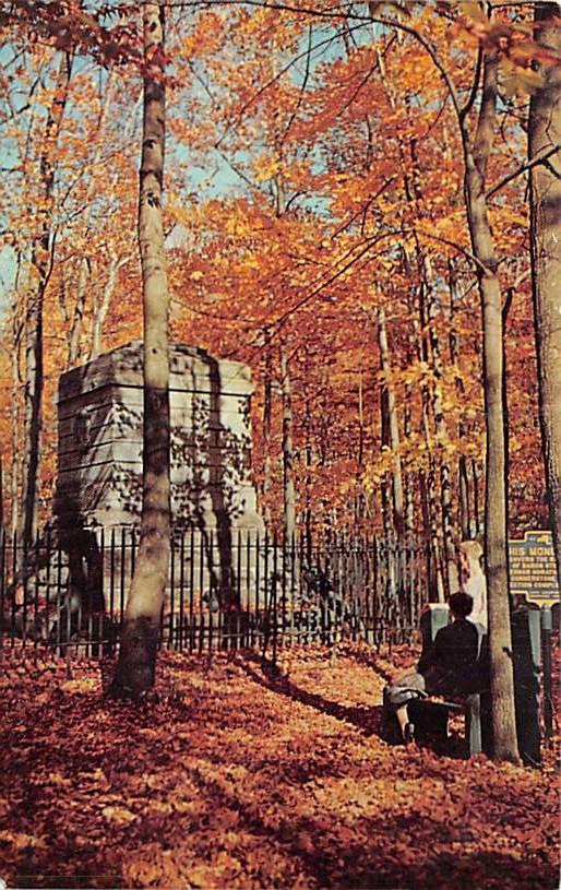 Steuben Hills NY