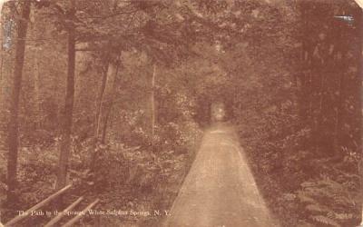The Path to the Sulphur Spring White Sulphur Springs, New York Postcard
