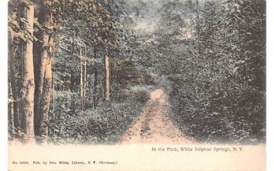 In the Park White Sulphur Springs, New York Postcard