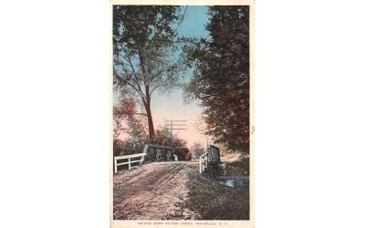Bridge over Silver Creek Waterloo, New York Postcard