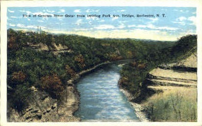 View of Genesee River Gorge - Rochester, New York NY Postcard