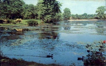Beautiful Lagoon - Long Island, New York NY Postcard