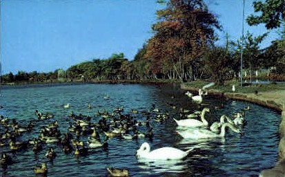 Picturesque Paradise  - Long Island, New York NY Postcard