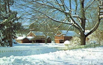 Winter on Long Island - New York NY Postcard