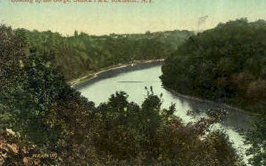 Gorge, Seneca Park - Rochester, New York NY Postcard