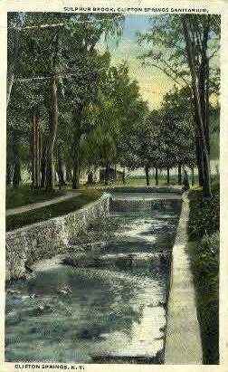 Sanitarium at Clifton Springs - New York NY Postcard
