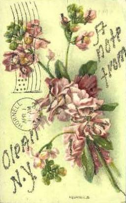 Olean, New York Postcard