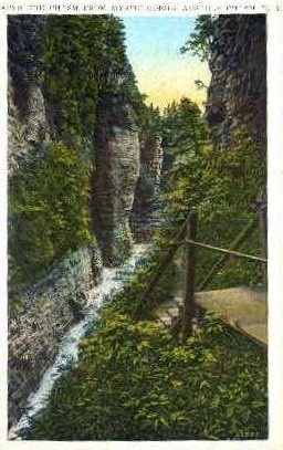 Down the Chasm from Mystic Gorge - Ausable Chasm, New York NY Postcard