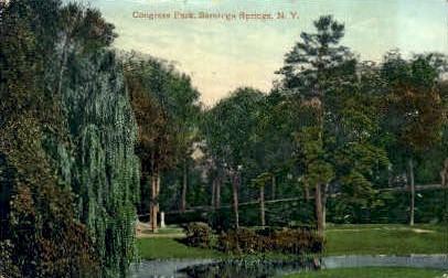 Congrass Park - Saratoga Springs, New York NY Postcard