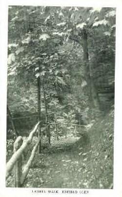 Laural Walk - Enfield Glen, New York NY Postcard