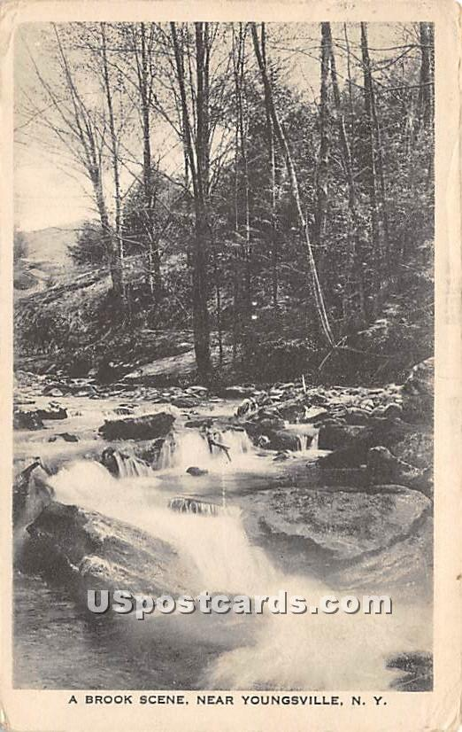 Brook Scene - Youngsville, New York NY Postcard