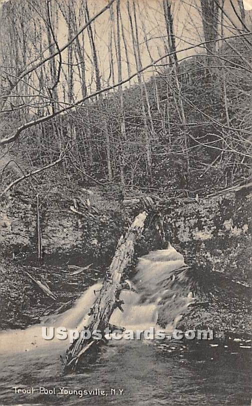 Trout Pool - Youngsville, New York NY Postcard