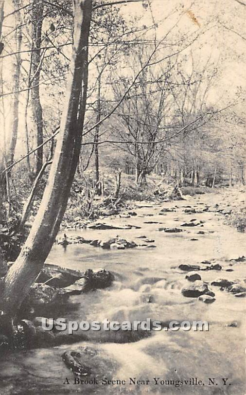 Brook Scene - Youngsville, New York NY Postcard