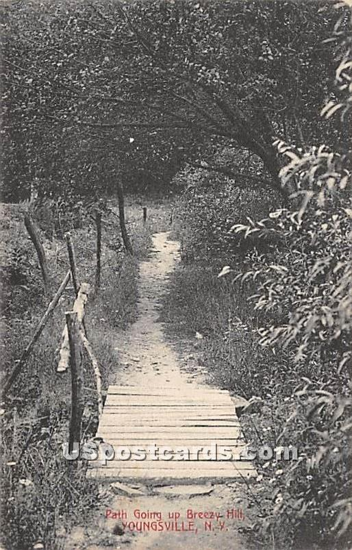 Path Going up Breezy Hill - Youngsville, New York NY Postcard