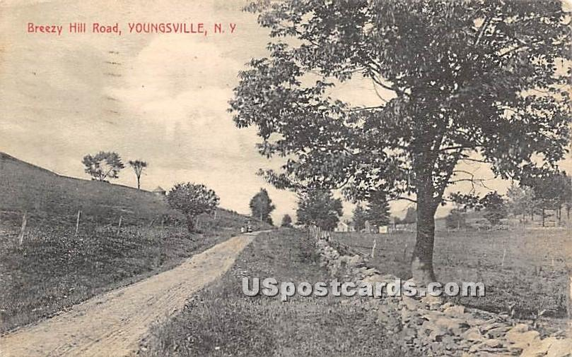 Breezy Hill Road - Youngsville, New York NY Postcard