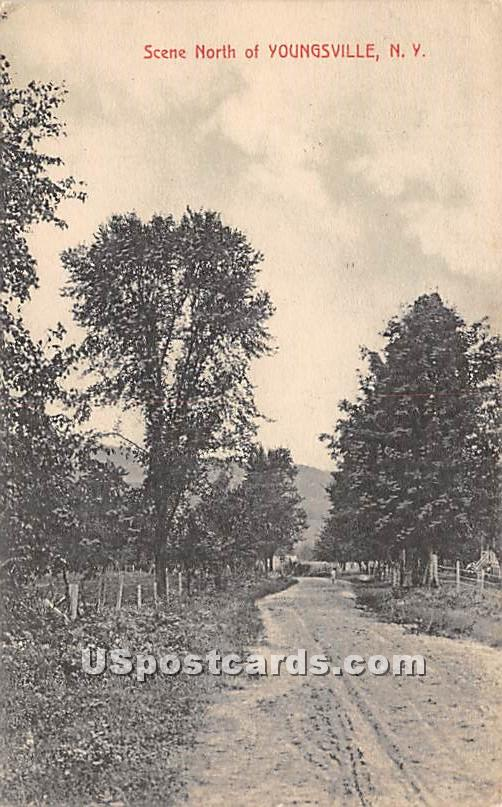 Scene North - Youngsville, New York NY Postcard