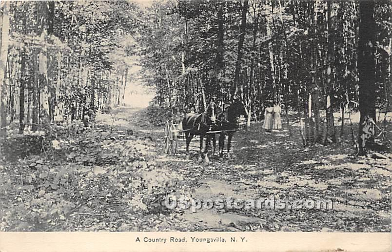 Country Road - Youngsville, New York NY Postcard