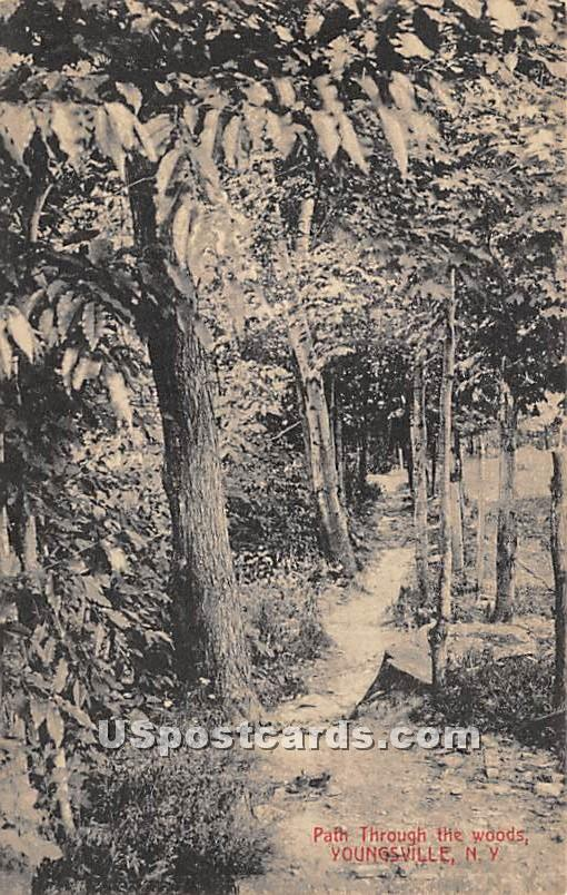 Path through the woods - Youngsville, New York NY Postcard