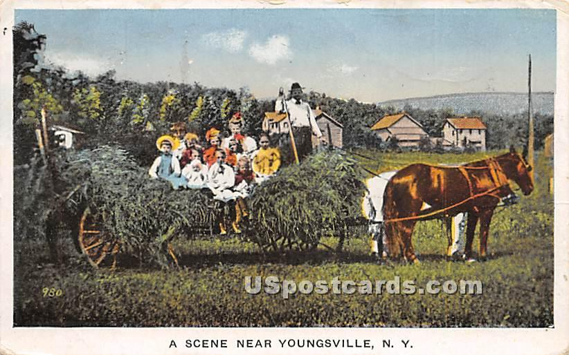 Hay Scene - Youngsville, New York NY Postcard