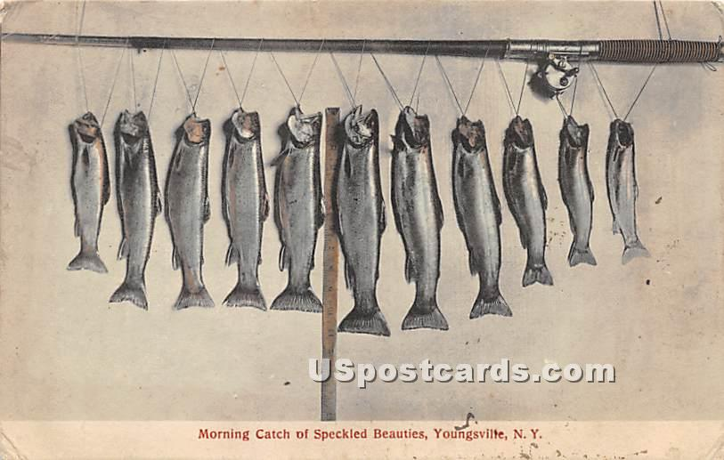 Morning Catch of Speckled Beauties - Youngsville, New York NY Postcard