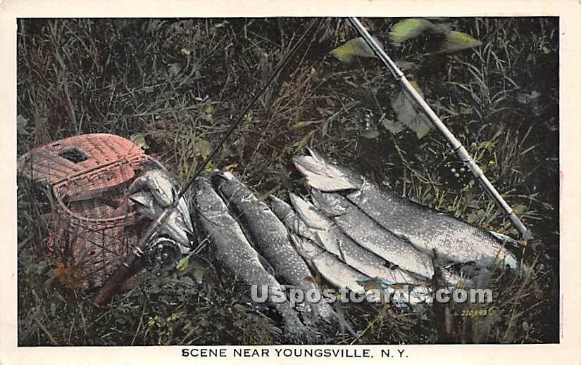 Fishing Catch - Youngsville, New York NY Postcard