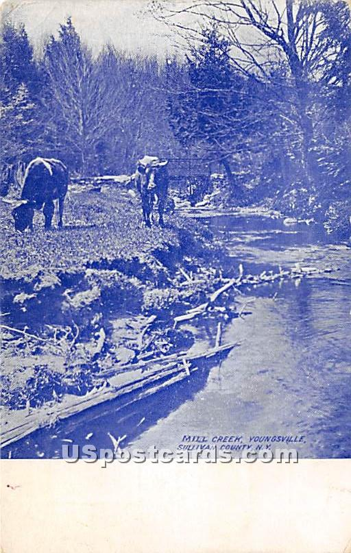 Mill Creek - Youngsville, New York NY Postcard
