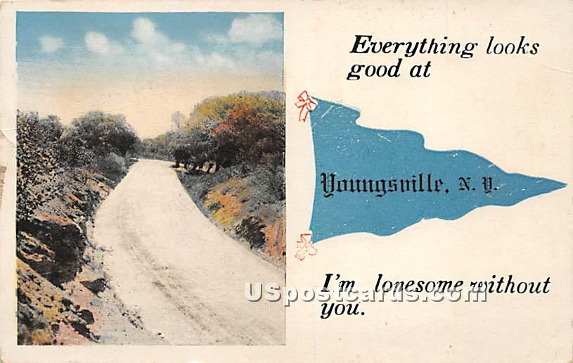 Everything looks good - Youngsville, New York NY Postcard